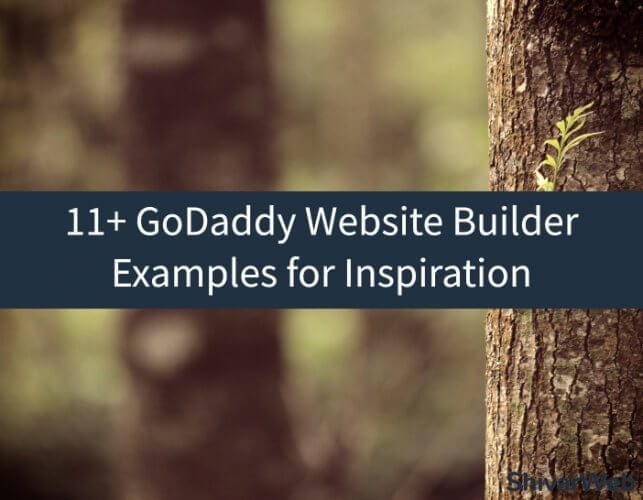 11+ GoDaddy Website Builder Examples for Inspiration